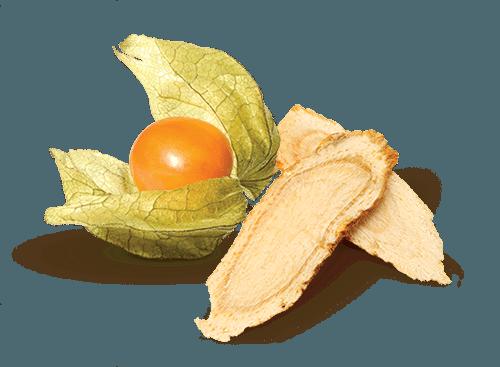 Benefits of aswhagandha